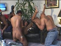 Biggest Blackest Orgies Scene 1