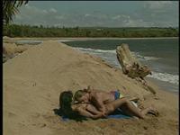 Hawaii Scene 6
