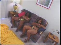 Real Big Afro Tits 2 Scene 2