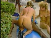 Buttman's Bend Over Babes Scene 8