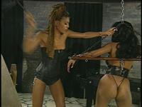 Sistaz N' Chainz Scene 2