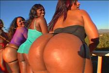 Big Ass Badonkadonk Bash Scene 2