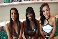 Porn's Top Black Models 3 Scene 6