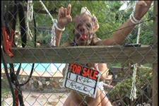 Slave 02 Scene 3