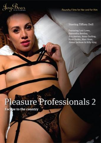 Pleasure Professionals 2 from Joy Bear front cover