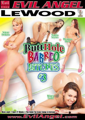 Butthole Barrio Bitches 3 from Evil Angel front cover