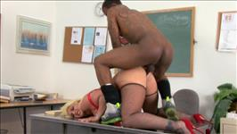 Black Cock Chasers 4