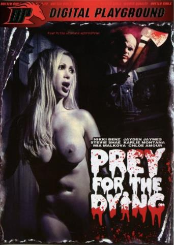 Prey For The Dying from Digital Playground front cover