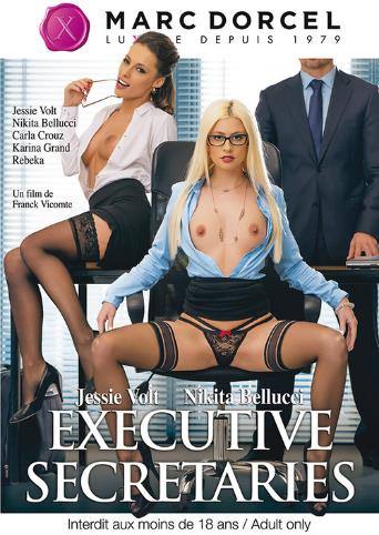 Executive Secretaries from Marc Dorcel front cover