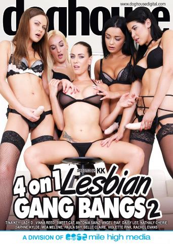 4 On 1 Lesbian Gangbangs 2 from Doghouse front cover