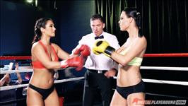 Knockout Knockers Scene 5