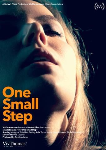 One Small Step from Viv Thomas front cover