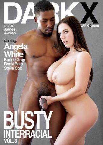 Busty Interracial 3 from Dark X front cover