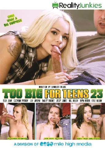 Too Big For Teens 23 from Reality Junkies front cover