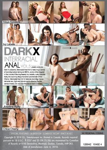 Interracial Anal 5 from Dark X back cover