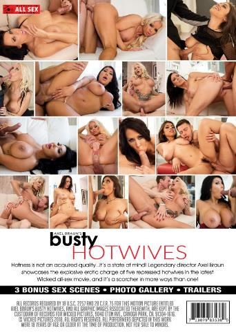 Axel Braun's Busty Hotwives from Wicked back cover
