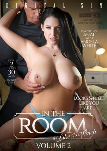 In The Room I Like To Watch 2 from Digital Sin front cover