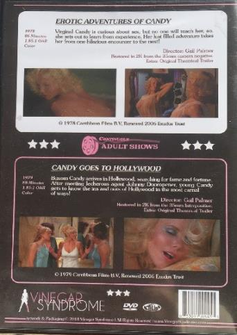 Erotic Adventures Of Candy from Vinegar Syndrome back cover